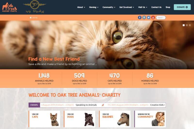 خدمات طراحی سایت حیوانات خانگی
