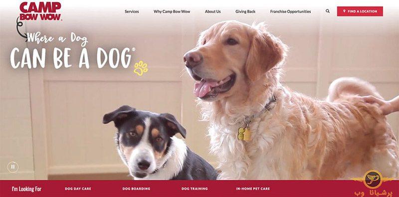 شرکت طراحی سایت حیوانات خانگی