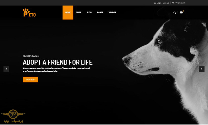 طراحی سایت حیوانات خانگی تهران