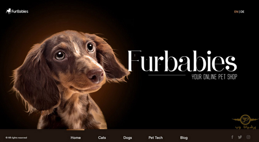 طراحی وبسایت حیوانات خانگی